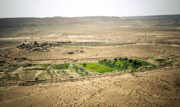 Vin dans le désert d'Israel