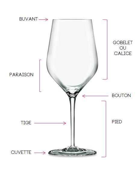 Bien tenir son verre à vin La Feuille de Vigne